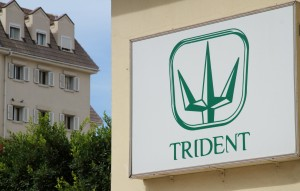 trident sign resize
